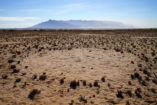 Behind the fairy circle, the mighty Brandberg Massif can be seen, which is with 2573 m Namibia's highest elevation.