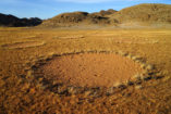 Fairy circles in the area of the Giribes Plains.